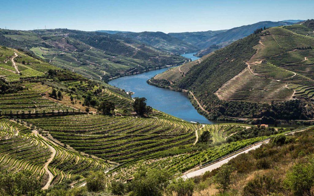 Portuguese Wine Virtual Tasting