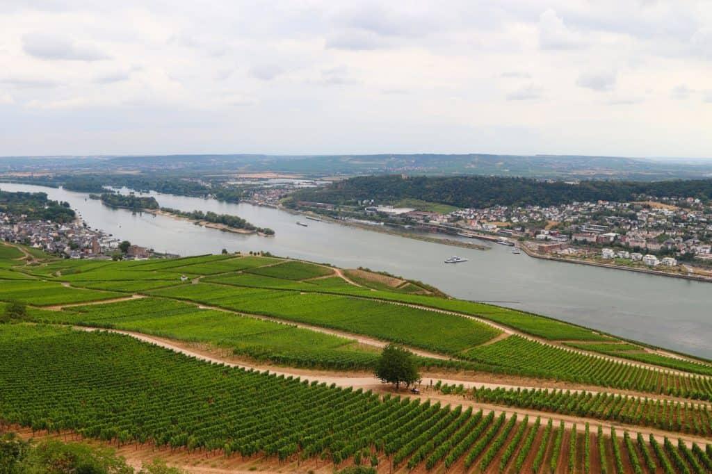 Rheingau Wine Region